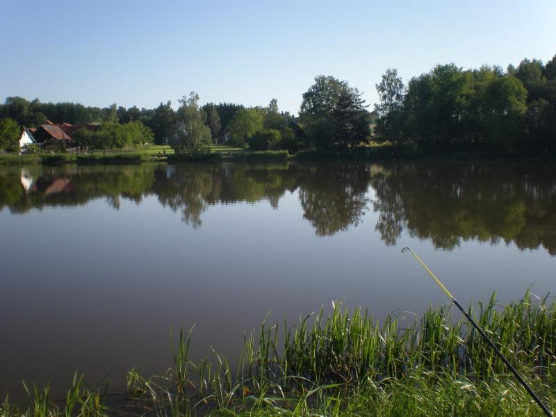 Gew sser die 4 hechte for Fischbesatz teich